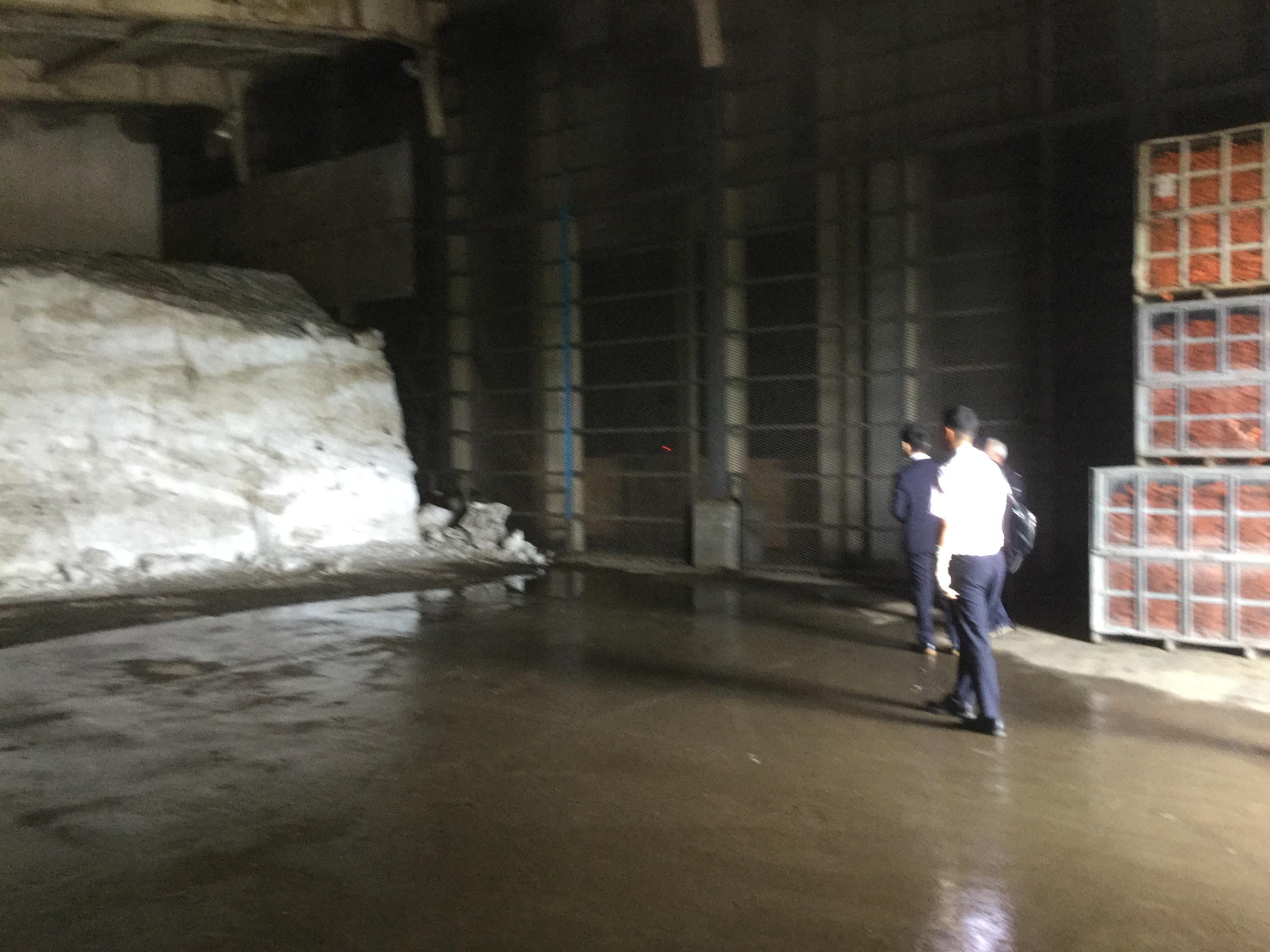 北海道洞爺湖 人参集荷選別場視察